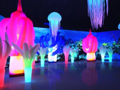 Podwodny Świat dekoracje tematyczne